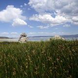 Mono jezioro krajobraz, usa Obraz Royalty Free