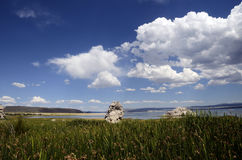 Mono jezioro krajobraz, usa Fotografia Royalty Free