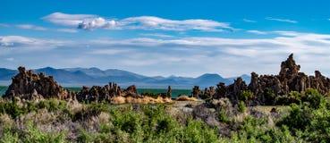 Mono jezioro, Południowy Tufa, Owens dolina, Kalifornia Zdjęcia Stock