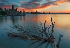 mono Kalifornien lake Arkivfoton