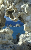 mono Kalifornien lake Arkivfoto