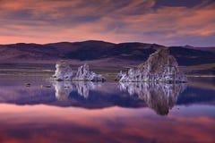Mono lago Foto de archivo libre de regalías
