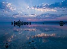Mono lago Imagen de archivo