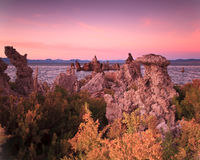 Mono lago California Imagen de archivo