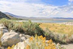 Mono lago, EUA Imagens de Stock