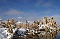 Mono lago nell'orario invernale Fotografie Stock