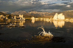 Mono Lake. Tufa formations on Mono Lake in the Owens Valley of California Stock Images