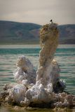 Mono Lake Royalty Free Stock Photography