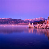 Mono Lake. Panorama at sunrise Stock Photos