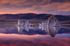 mono lake Royaltyfri Foto