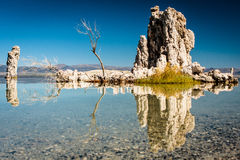 Mono Lake. Tufa towers mirroring in Mono Lake water Stock Images