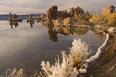 mono lake Royaltyfria Foton