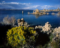 Mono Lake Stock Image