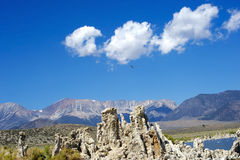 Mono Lake Landscape with An Eagle Royalty Free Stock Photo
