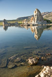 Mono Lake Reflections Stock Images