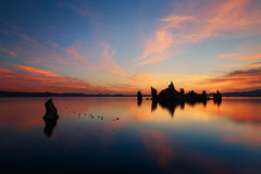 Mono lake. Reflections during the sunrise Stock Image