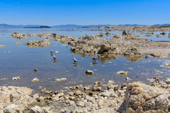 Mono Lake Shore and Tufa Formations, California Stock Image