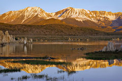 Mono Lake Sunrise Royalty Free Stock Image