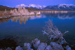 Mono Lake sunrise. Mono Lake's limestone tufa formations at dawn with Sierra Nevada mountains in the background Stock Photos