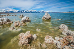 Mono Lake Tufa Up Close Royalty Free Stock Image