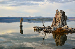 Mono Lake Tufas Stock Images