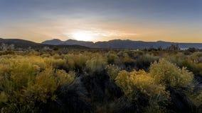 Mono meer bij zonsondergang Stock Foto