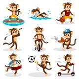 Mono que hace actividad Imagen de archivo