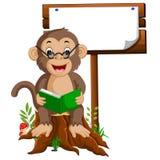 Mono que lee un libro Imágenes de archivo libres de regalías