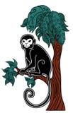 Mono que se sienta en un árbol Imágenes de archivo libres de regalías