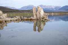 Mono sjötufa som reflecing i lugna vatten Royaltyfria Foton