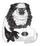 Mono tití de la moda en vidrios elegantes con el bolso Foto de archivo libre de regalías