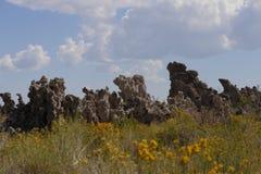 Mono tobas volcánicas del lago - estructuras de la roca de la sal foto de archivo
