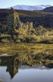 mono tufa för lake Royaltyfria Bilder