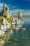 mono tufa för lake royaltyfri foto