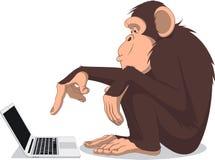 Mono y ordenador Imagen de archivo libre de regalías