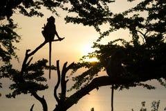 Mono y puesta del sol Fotografía de archivo libre de regalías