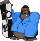 Mono y snowboard Foto de archivo