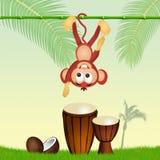 Mono y tambores Imagen de archivo libre de regalías