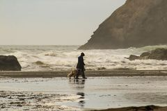 Monochomatic view of turbulent ocean and giant rocks with unrecognizable woman in rainboots and golden retriever dog walking on we. T sand stock image
