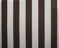 Monochrom linia dla tła Fotografia Stock