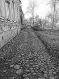Monochromatic lappad trottoar Arkivbilder