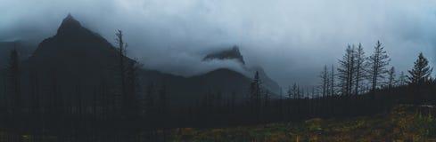 Monochromatisch die panorama van bergpieken in wolken worden behandeld Royalty-vrije Stock Foto's