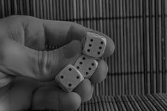 Monochromatyczna sterta trzy klingeryt dices w mężczyzna ` s ręce na drewnianym stołowym tle Sześć stron sześcianów z czarnymi kr Zdjęcie Stock