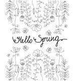 Monochromatyczny kwiecisty ogród z motylem Obraz Royalty Free
