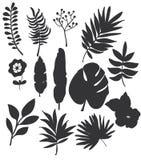 monochromatyczny ustalony rysunek kwiaty i liście na białym tle Zdjęcia Royalty Free