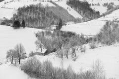 Monochrome ландшафт зимы в Трансильвании Стоковое Изображение
