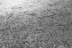 Monochrome асфальт Стоковое Изображение
