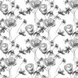 Monochrome безшовная картина с цветками лета Стоковые Фото