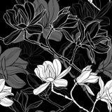 Monochrome безшовная предпосылка с магнолией бесплатная иллюстрация