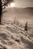 monochrome зима захода солнца Стоковые Изображения RF